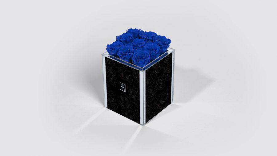 9-NN-Blu