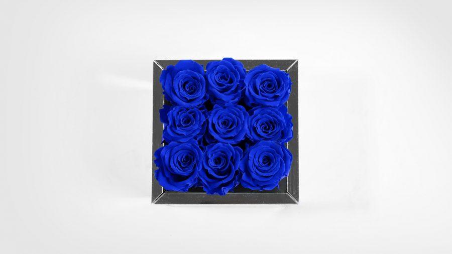 9-Top-Blu