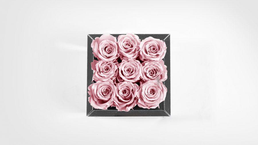 9-Top-Rosa