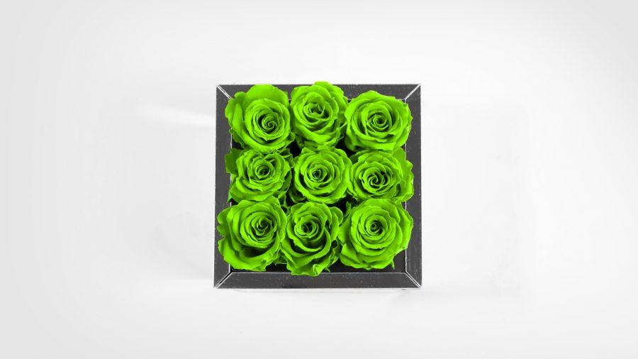 9-Top-Verde