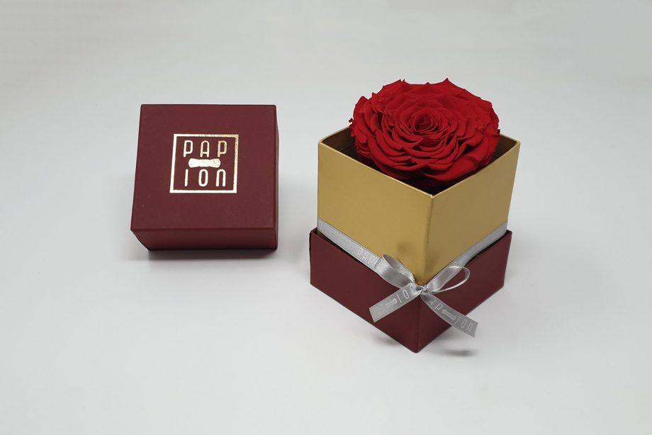 Bordeaux-Rosa-Grande