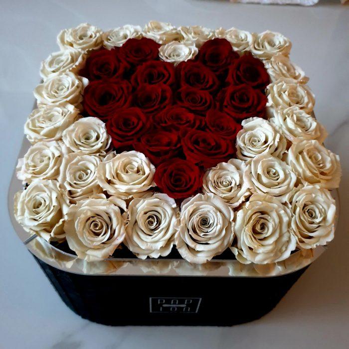 rose stabilizzate rosse e bianche a forma di cuore