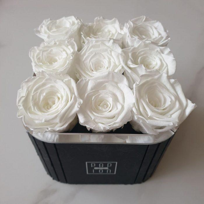 Rose fluo stabilizzate