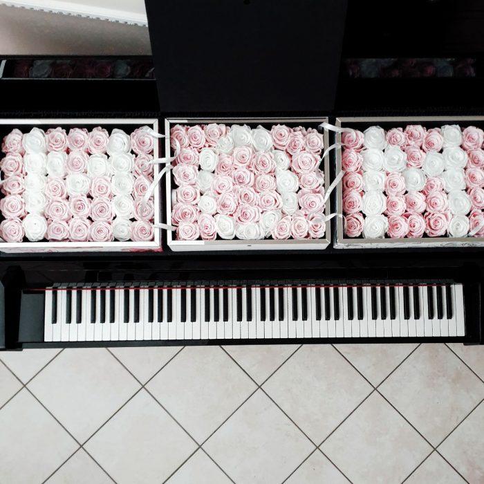MAMMA - MOM rose stabilizzate rosa e bianche