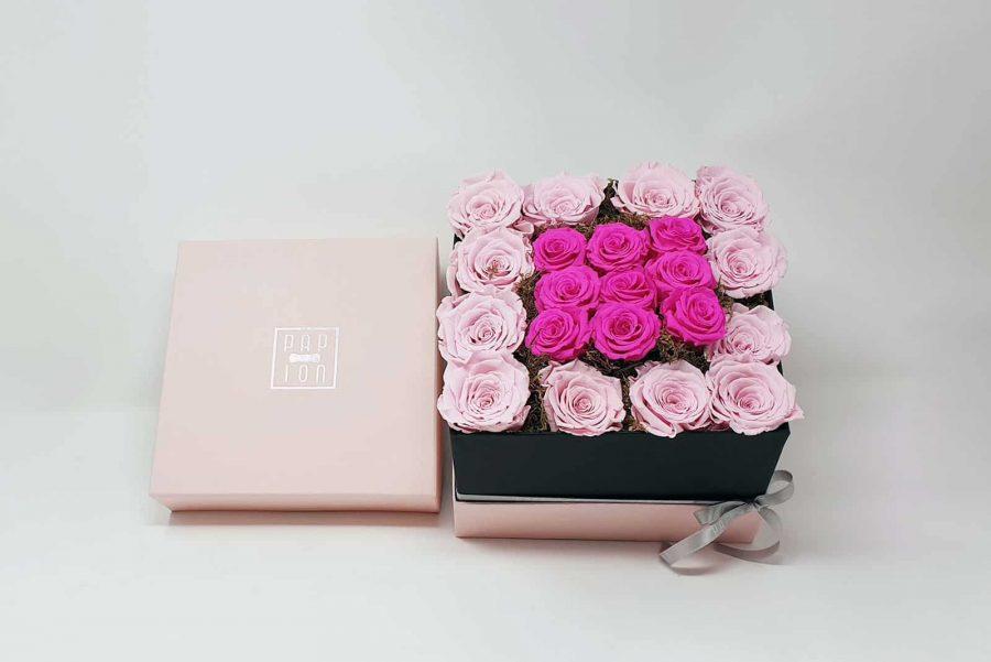 Rose-Viola-e-Rosa