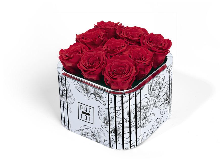 Presentazione del nuovo cofanetto, in cartone pressato, con una grafica di rose bianca e nero