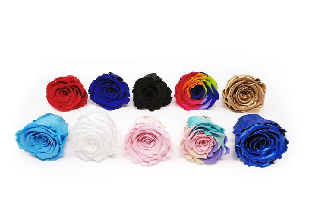 Rose eterne