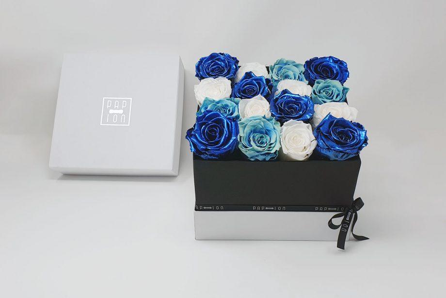 Cofanetto Luxury con 16 rose tricolore blu
